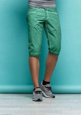 Мужские шорты Грег зеленый